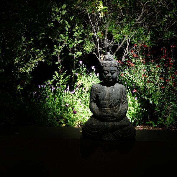 Penthouse Buddha statue