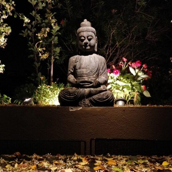 Penthouse Buddha statue garden
