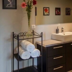 Suite 103 Bathroom details