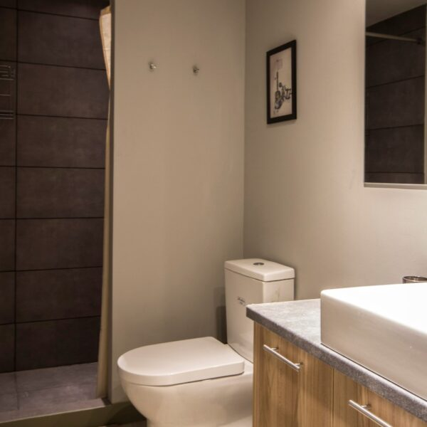 Suite 202 Bathroom