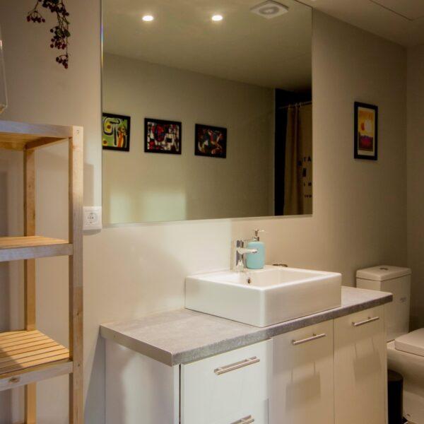 Suite 203 Bathroom